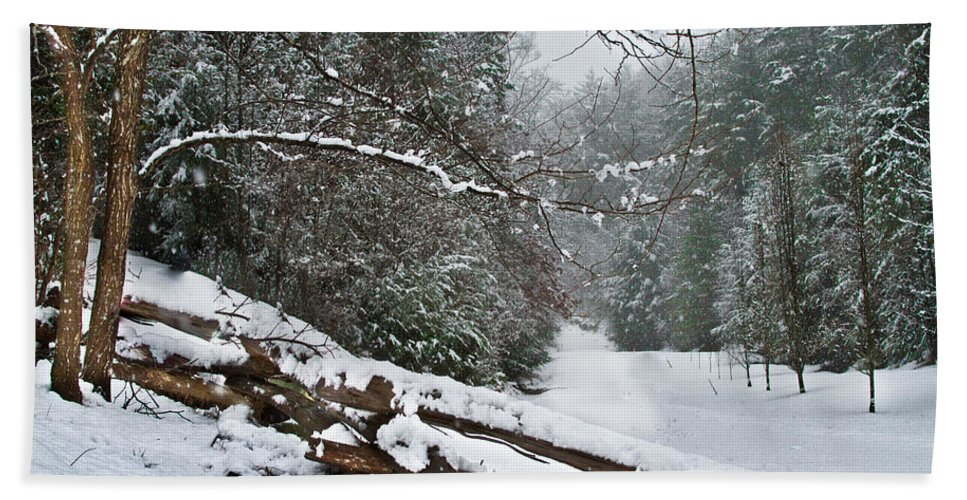 Appalachia Beach Towel featuring the photograph Snowy Fence by Debra and Dave Vanderlaan