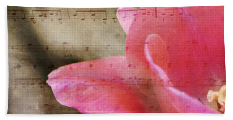 Music Beach Towel featuring the photograph Spring Sings by Traci Cottingham