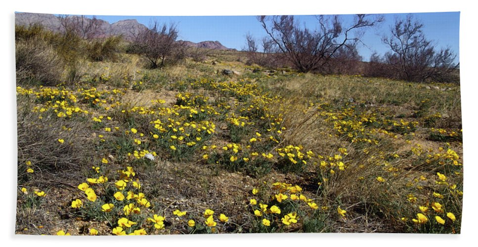 Poppy Beach Towel featuring the photograph Spring Surprise Franklin Mountains by Kurt Van Wagner