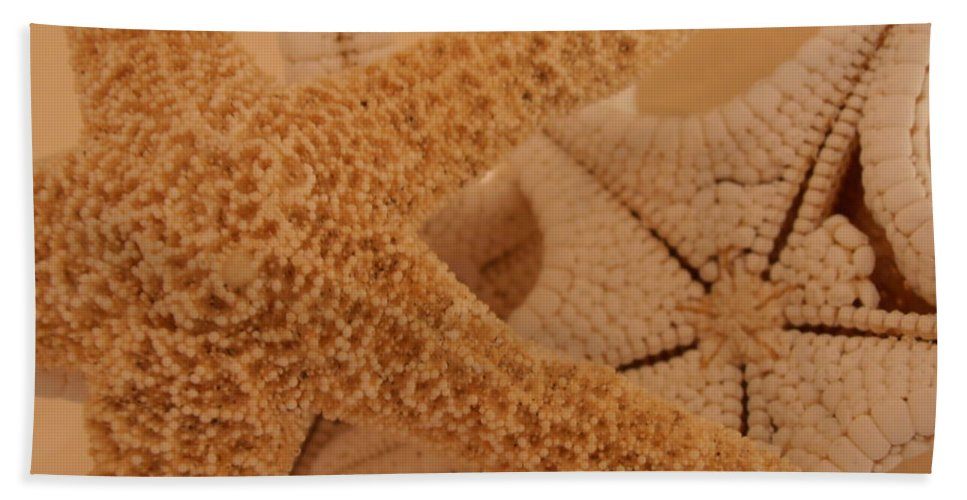 Starfish Beach Towel featuring the photograph Starfish by Kimberly Perry