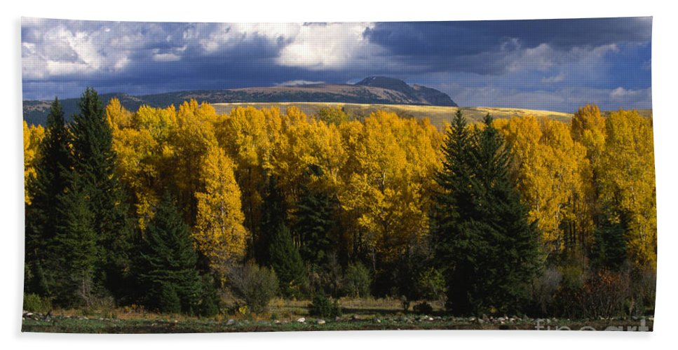 Bronstein Beach Towel featuring the photograph Storm Over Sleeping Indian-grand Tetons by Sandra Bronstein