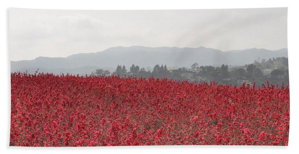 California Beach Towel featuring the photograph Study In Red And Grey by Rich Bodane