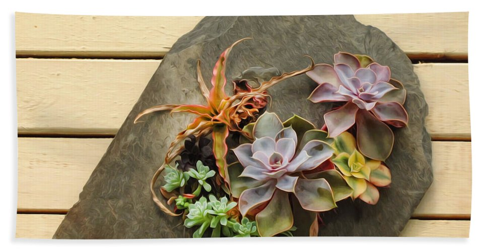 Succulents Beach Towel featuring the photograph Succulents by Dave Mills