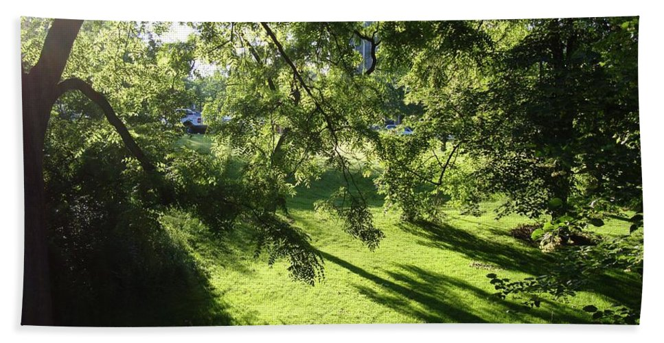 Beal Botanical Garden Beach Towel featuring the photograph Summer Shade by Joseph Yarbrough