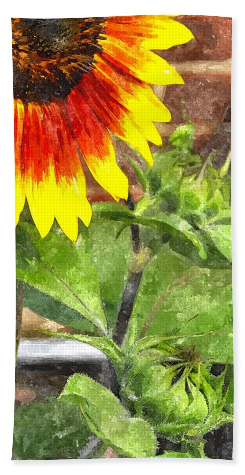 Sun Flower Beach Towel featuring the digital art Sunflower 3 Sf3wc by Jim Brage