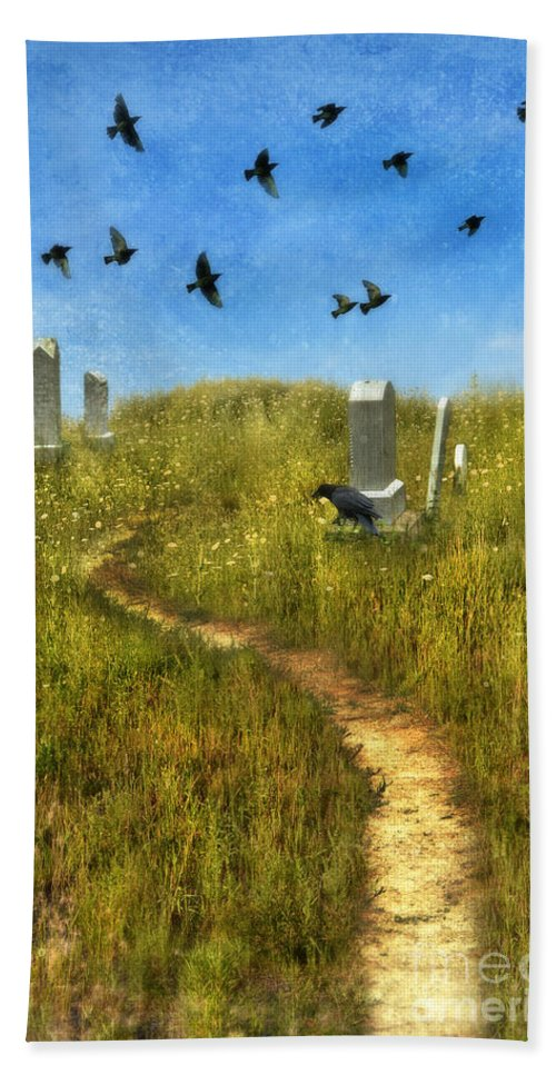 Graves Beach Towel featuring the photograph Sunny Graveyard With Birds by Jill Battaglia