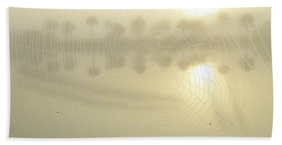 Web Beach Towel featuring the photograph Sunrise Web by Kimberly Mohlenhoff