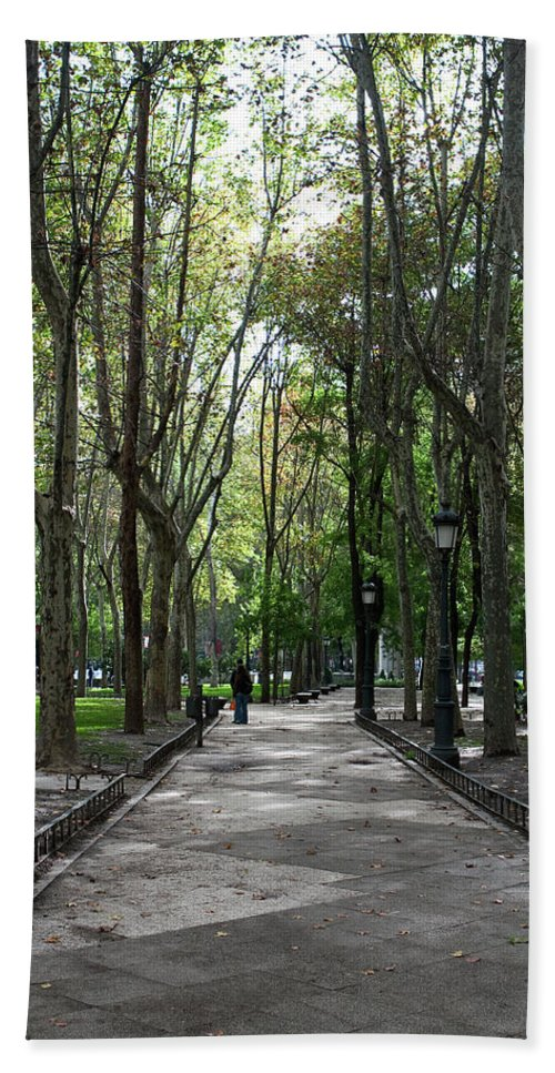 Madrid Beach Towel featuring the photograph Tall Trees Of Madrid by Lorraine Devon Wilke