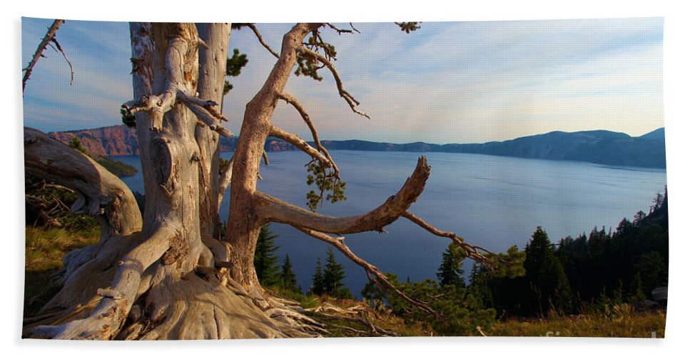 Crater Lake National Park Beach Towel featuring the photograph The Banks Of Crater Lake by Adam Jewell