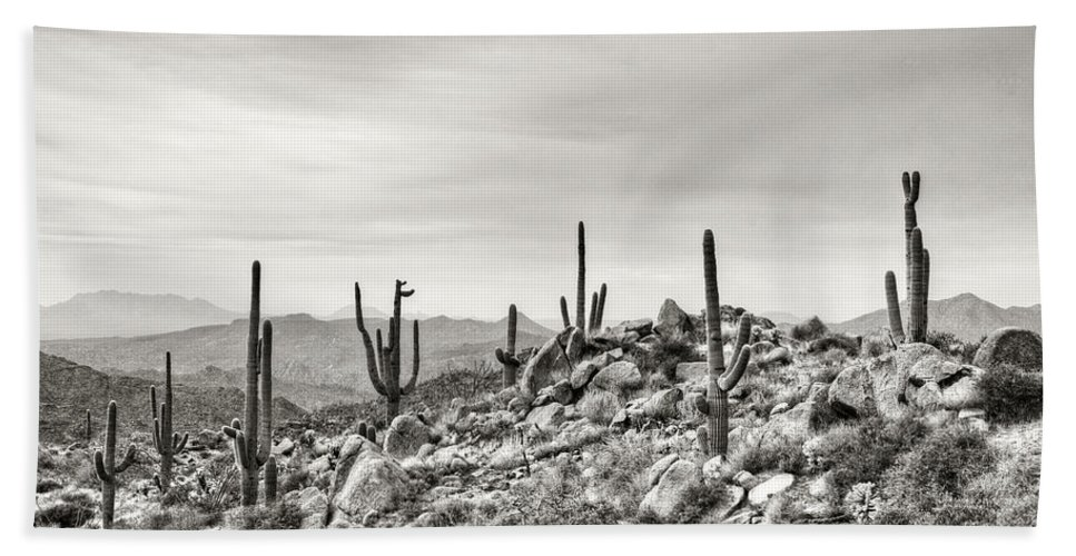 Arizona Beach Towel featuring the photograph The High Desert by Saija Lehtonen