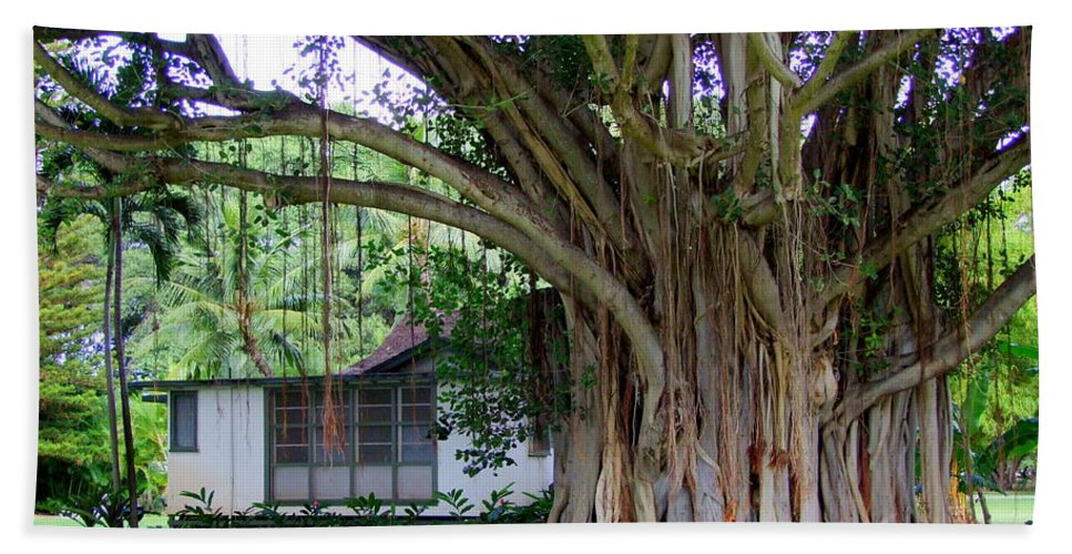 House Beach Towel featuring the photograph The House Beside The Banyan Tree by Mary Deal
