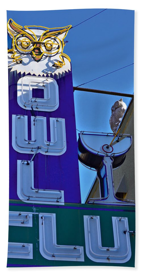 Owls Beach Towel featuring the photograph The Owl Club by Bill Owen