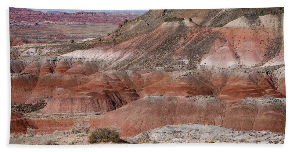 Arizona Beach Towel featuring the photograph The Painted Desert 8013 by James BO Insogna