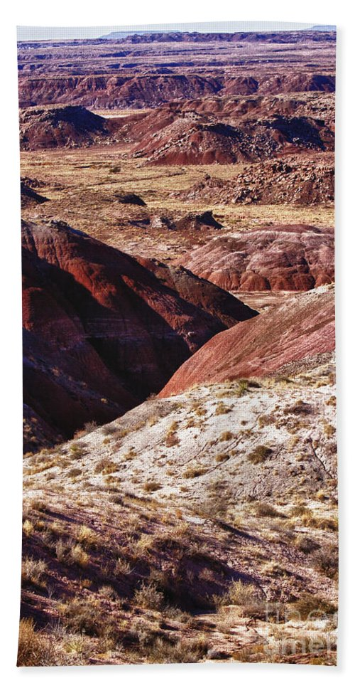 Arizona Beach Towel featuring the photograph The Painted Desert 8023 by James BO Insogna