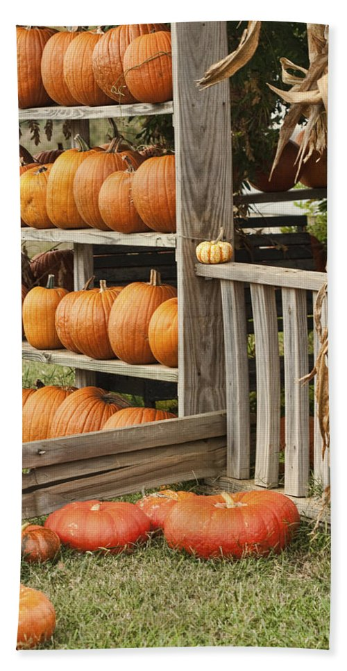 Orange Beach Towel featuring the photograph The Pumpkin Shack At Isom's Orchard by Kathy Clark