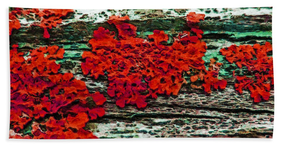 Lichen Beach Towel featuring the photograph The Red Clouds by Steve Taylor