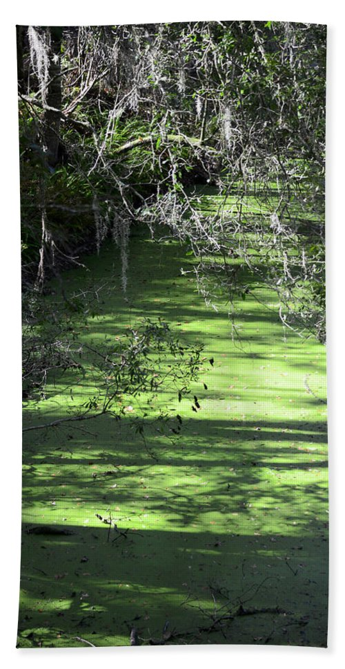 Alafia River Beach Towel featuring the photograph The River by Carolyn Marshall