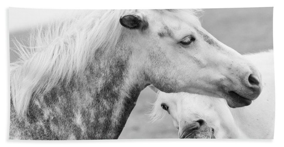 Horses Beach Towel featuring the photograph The Smiling Horse by Beth Riser