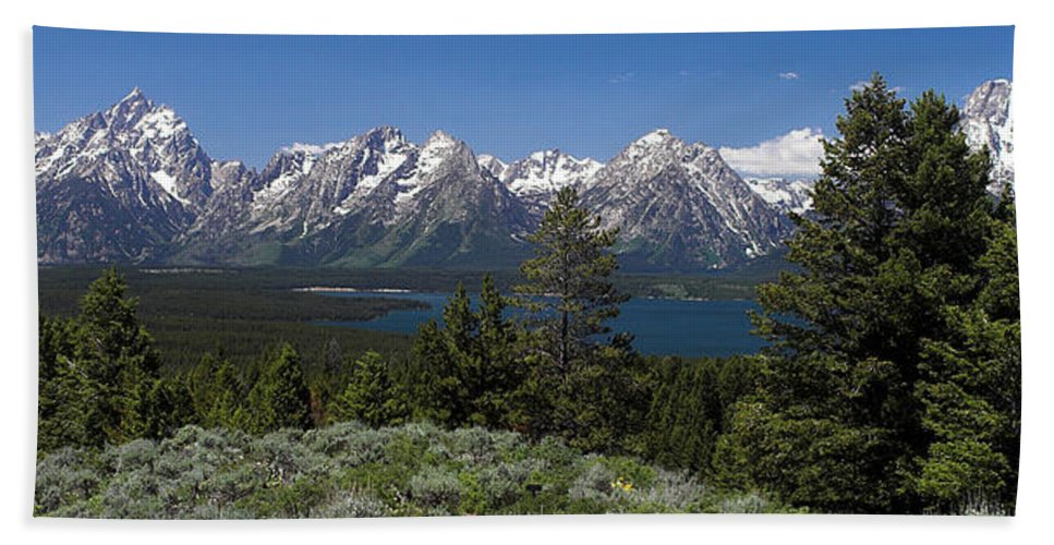 Grand Tetons Beach Towel featuring the photograph The Tetons by Dan Wells