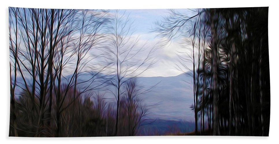 The Vermont Woods Beach Towel featuring the photograph The Vermont Woods - Stowe by Bill Cannon