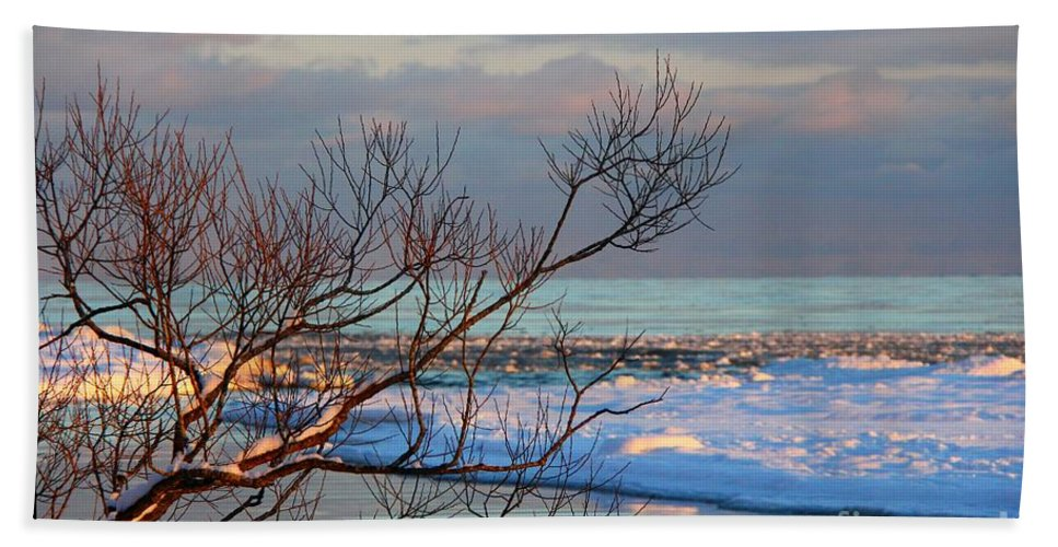 Lake Beach Towel featuring the photograph The Water's Edge by Davandra Cribbie