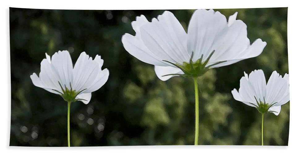 Wildflower Beach Towel featuring the photograph Three Wildflowers by Angelina Vick
