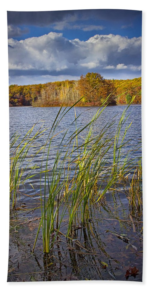 Art Beach Towel featuring the photograph Tiny Island On Hall Lake No 0086 by Randall Nyhof