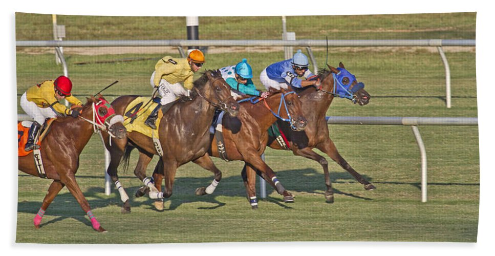 Horse Beach Towel featuring the photograph To The Line by Betsy Knapp