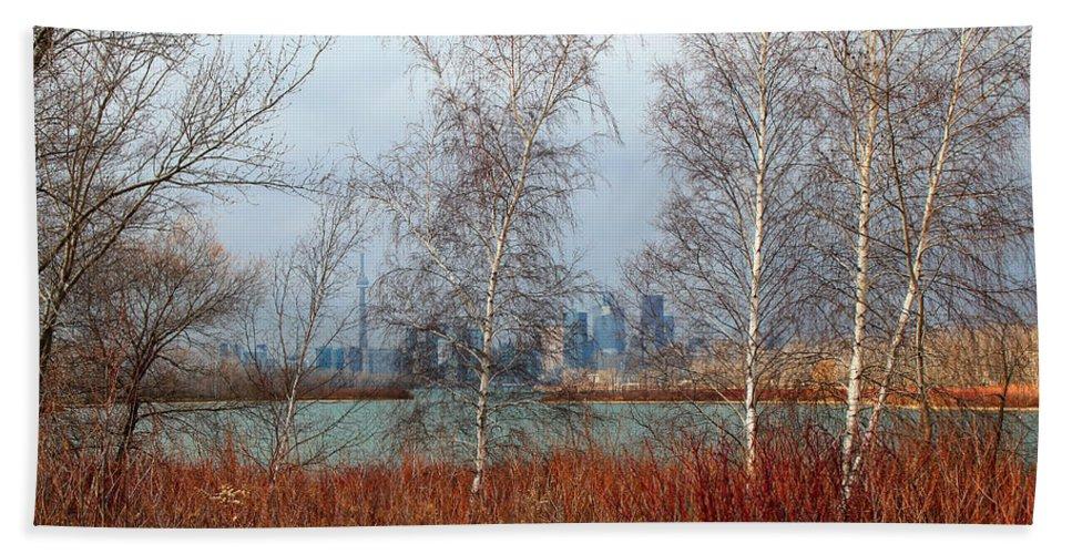 Toronto Skyline Beach Towel featuring the photograph Toronto Skyline 14 by Andrew Fare