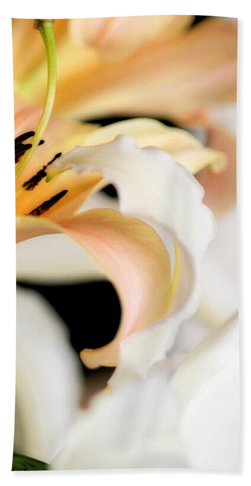 Lily Beach Towel featuring the photograph Touching Softly by Angela Rath