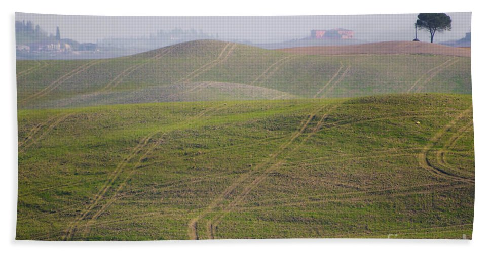 Field Beach Towel featuring the photograph Tracks On The Field by Mats Silvan