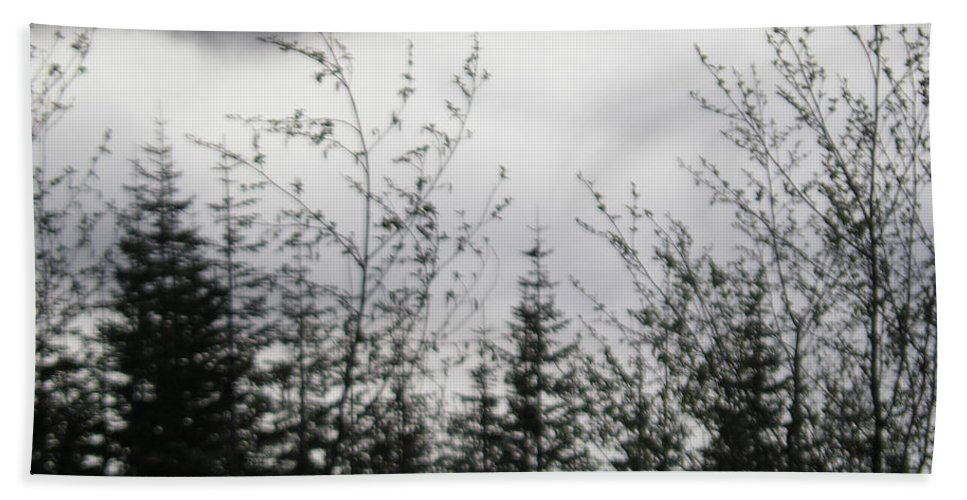 Trees Beach Towel featuring the photograph Trees And Clouds by Catherine Helmick