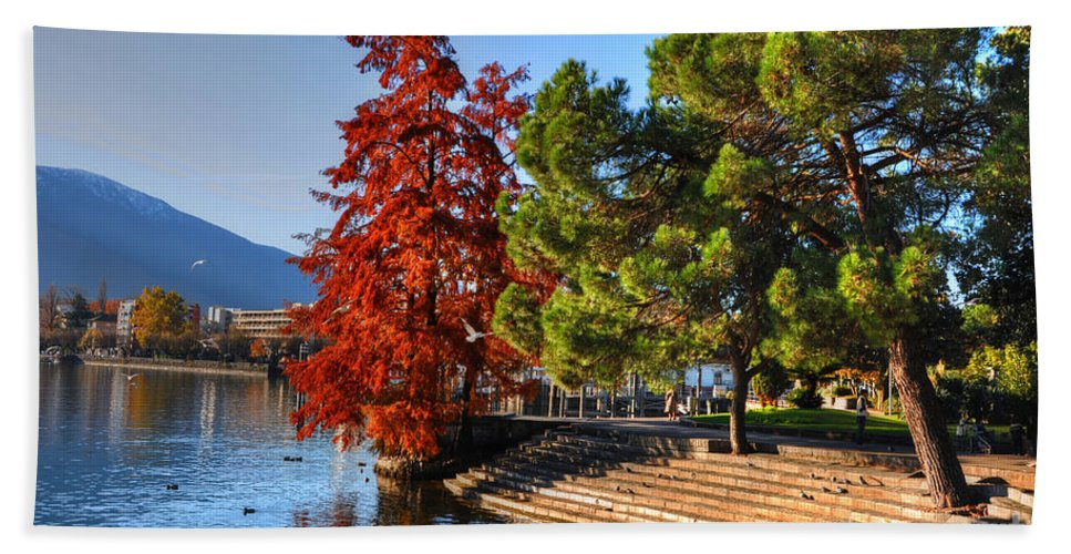 Trees Beach Towel featuring the photograph Trees On The Lake Front In Autumn by Mats Silvan