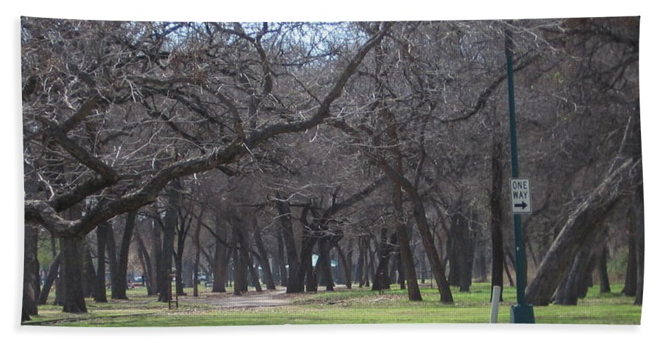 Park Beach Towel featuring the photograph Trinity Park Ft Worth Tx by Amy Hosp