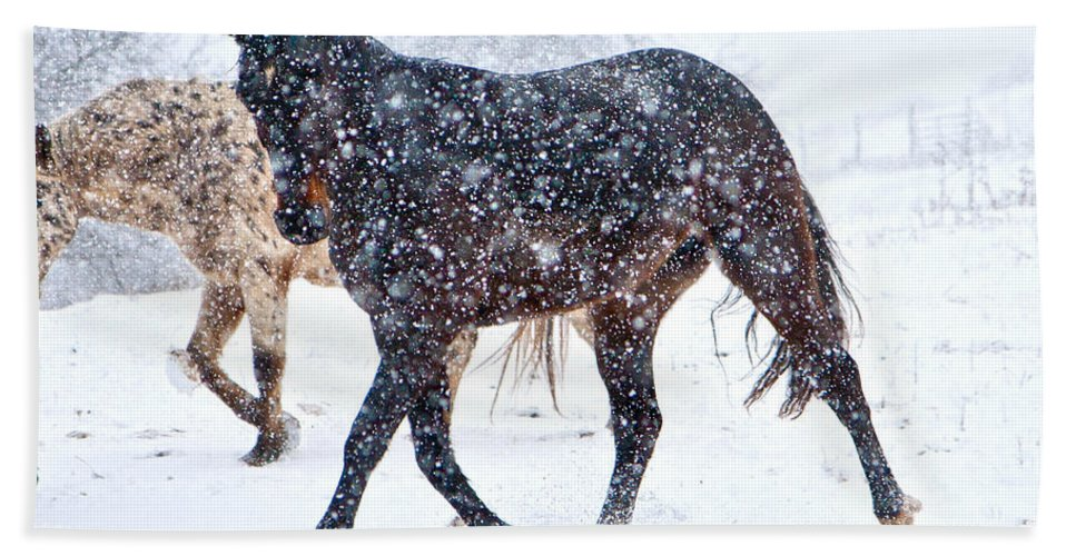 Snow Beach Towel featuring the photograph Trotting In The Snow by Betsy Knapp