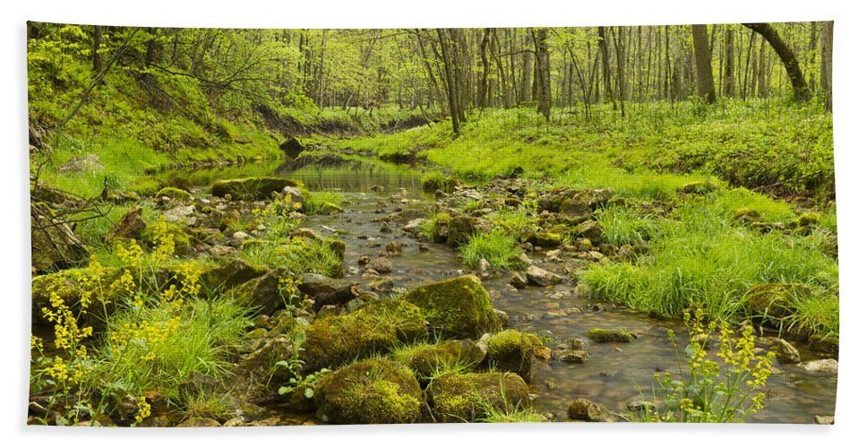 Trout Beach Towel featuring the photograph Trout Run Creek 5 by John Brueske