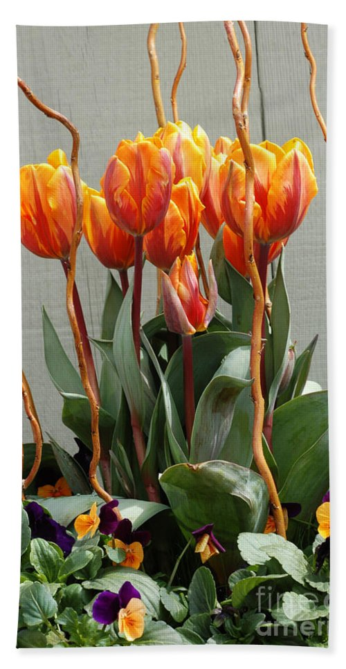 Tulip Beach Towel featuring the photograph Tulip Arrangement by Mike Nellums