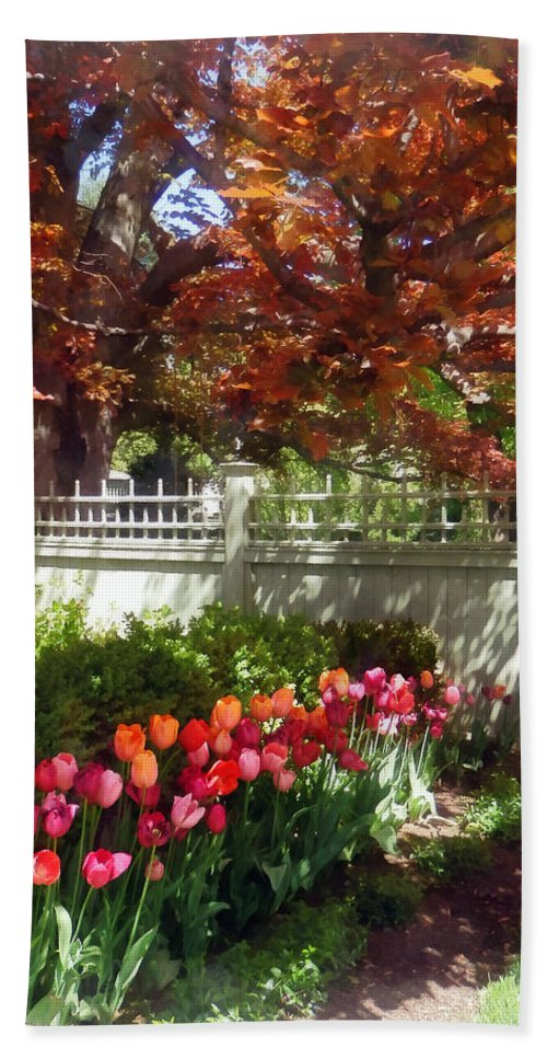 Tulip Beach Towel featuring the photograph Tulips By Dappled Fence by Susan Savad