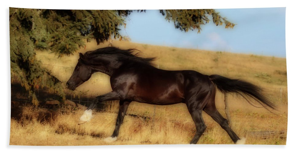 Uphilll Gallop Beach Towel featuring the photograph Uphilll Gallop by Wes and Dotty Weber