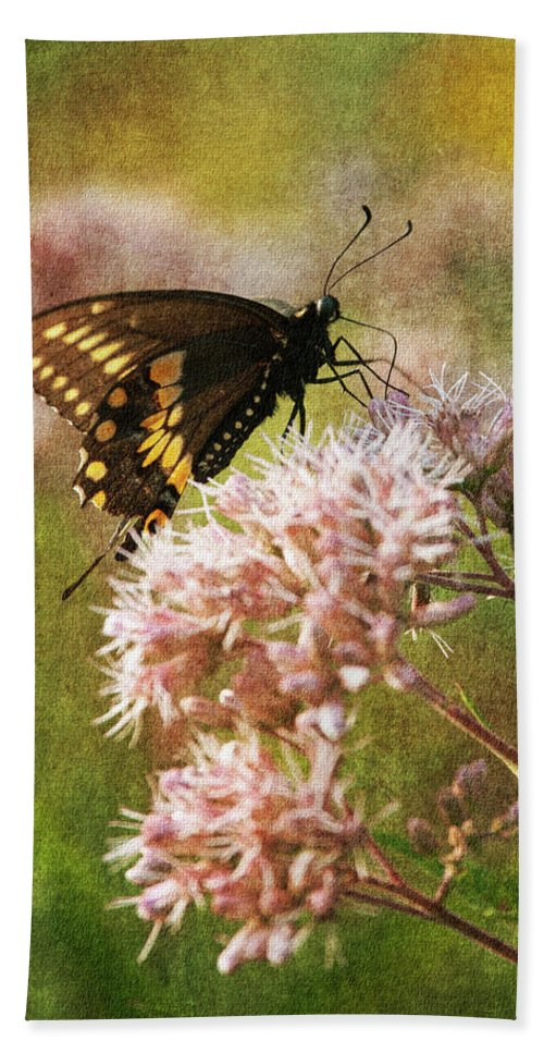 Butterfly Beach Towel featuring the photograph Victuals II by Dale Kincaid