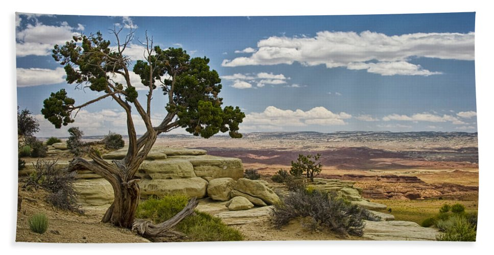 Art Beach Towel featuring the photograph View From A Mesa by Randall Nyhof