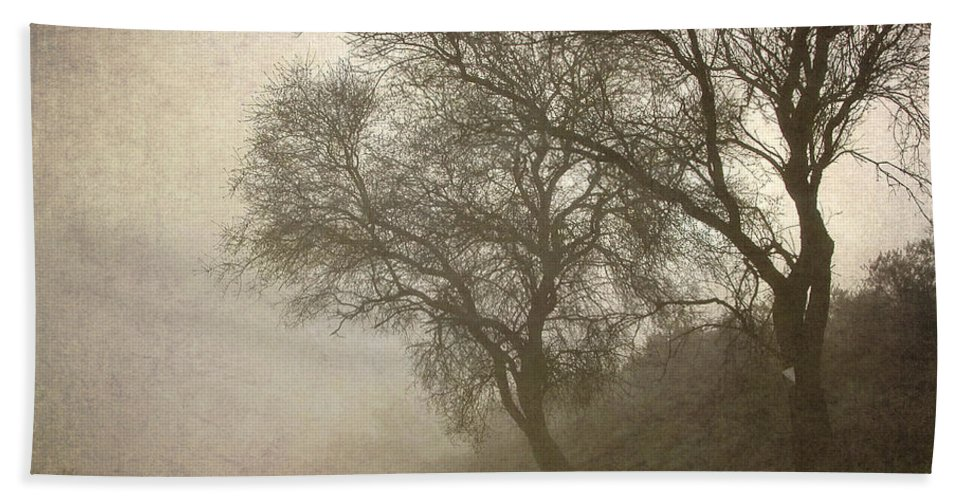 Landscapes Beach Towel featuring the photograph Vigilants Trees In The Misty Road by Guido Montanes Castillo