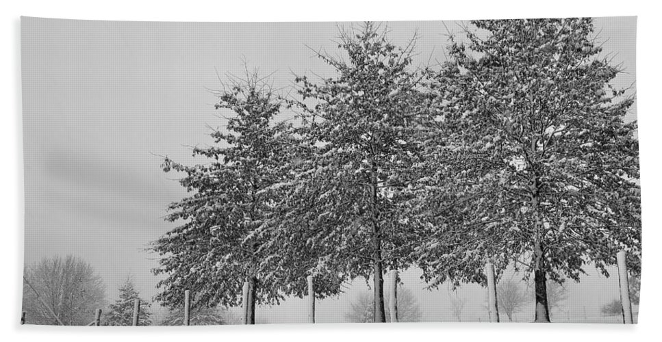 Snow Beach Towel featuring the photograph Virginia Snow by Todd Hostetter