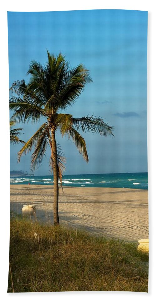 Palm Tree Beach Towel featuring the photograph Voyage by Joseph Yarbrough