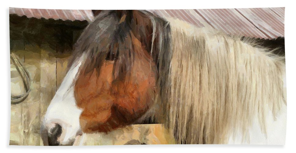 Horse Beach Towel featuring the photograph Waiting For A Stroke by Steve Taylor