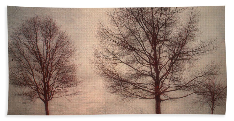 Texture Beach Towel featuring the photograph Waiting For Winter by Tara Turner