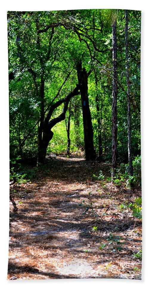 Ocala Beach Towel featuring the photograph Walk In The Woods by Kari Tedrick