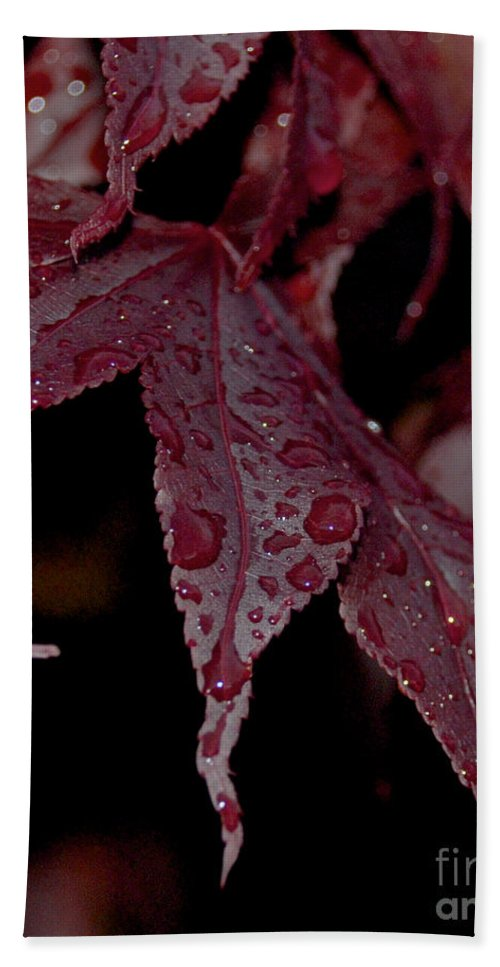 Water Beach Towel featuring the photograph Water Beads Of Red by Mark Dodd