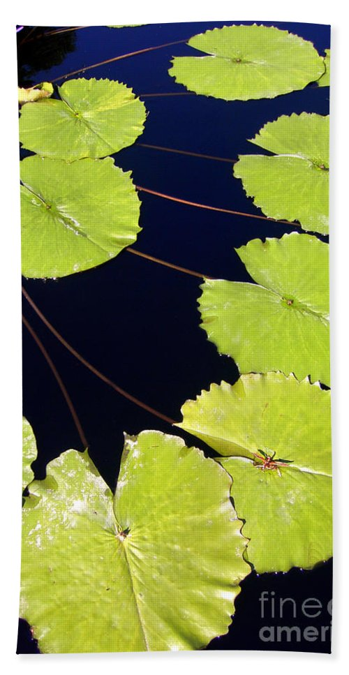 Water Lily Beach Towel featuring the photograph Water Lily Pads And Bloom by Mike Nellums