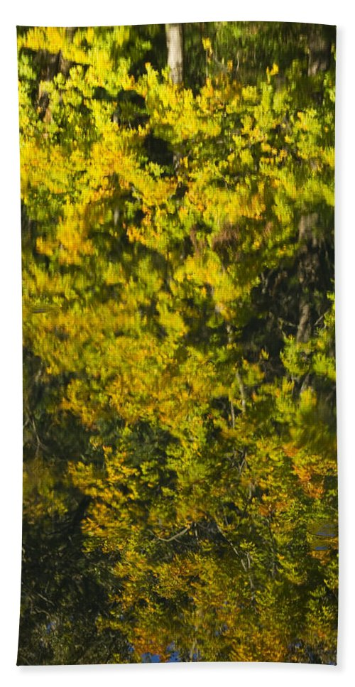 Abstract Beach Towel featuring the photograph Water Reflection Abstract Autumn 1 F by John Brueske